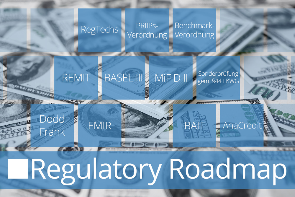 Regulatory Roadmap